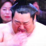 徳勝龍(とくしょうりゅう)の嫁や家族は?出身小学校や中学に故郷・奈良でパレードは?